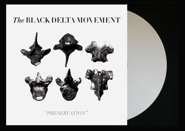 Preservation Vinyl/Tea Towel Bundle - The Black Delta Movement