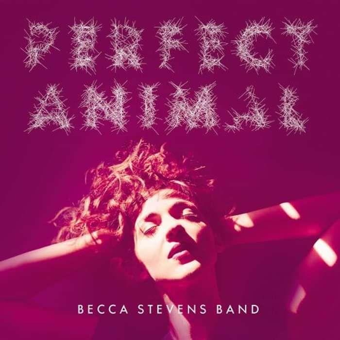 Perfect Animal Vinyl - Becca Stevens