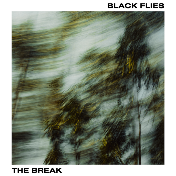 The Break - BLACK FLIES