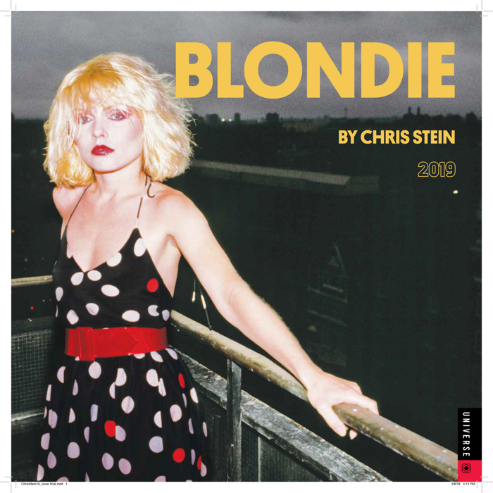 BY CHRIS STEIN CALENDAR 2019 - BlondieUS