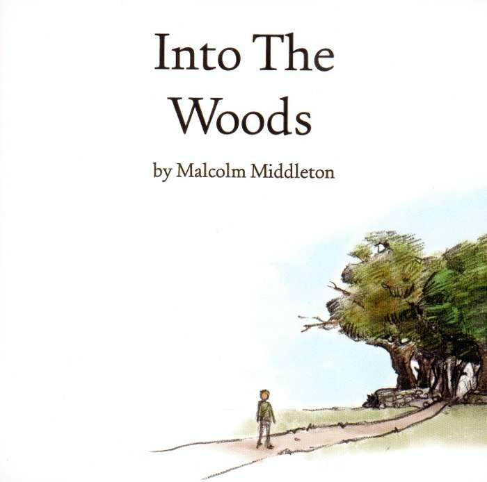 Malcolm Middleton - Into The Woods - CD Album (2005) - Malcolm Middleton