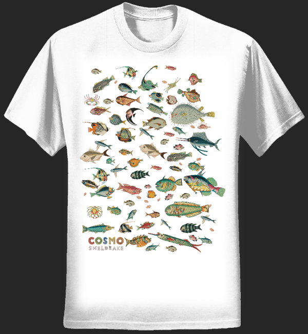 Many Fish Shirt - cosmosheldrake