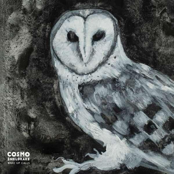 Wake Up Calls [limited edition Vinyl] - cosmosheldrake