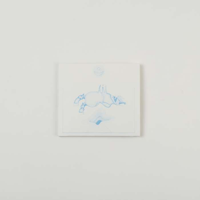 Ape In Pink Marble CD - Devendra Banhart