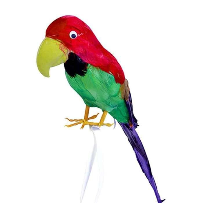 Devin Townsend - Parrot - Devin Townsend