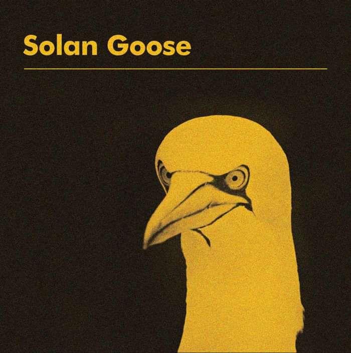 Solan Goose (Digital) - Erland Cooper