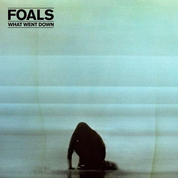 What Went Down - CD - Foals