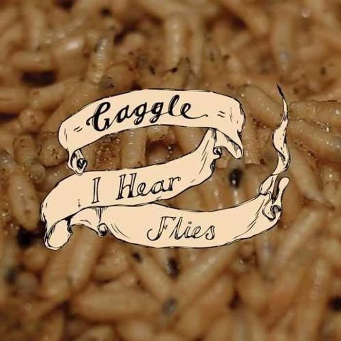 "I Hear Flies - 7"" - Gaggle"