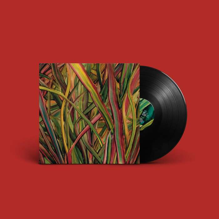 Where Wildness Grows - LP - Gengahr