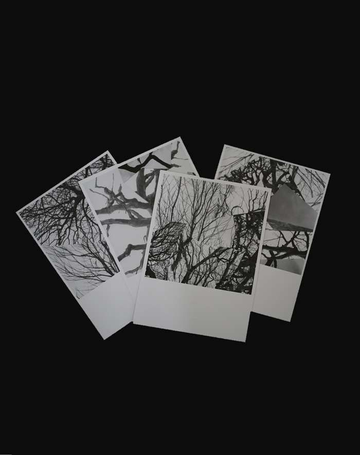 Limited Edition Postcard Set - Goldfrapp