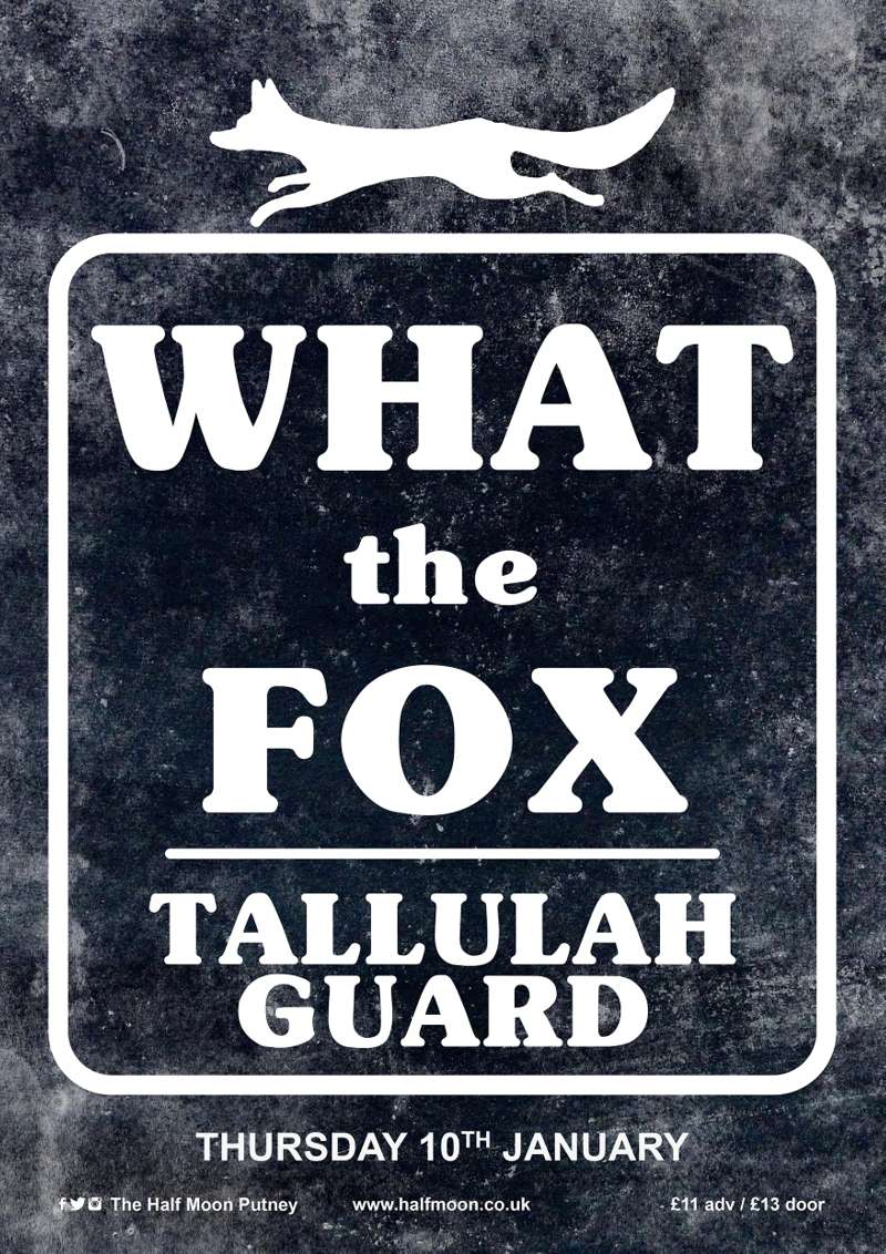 What The Fox full band launch + debut singer-songwriter