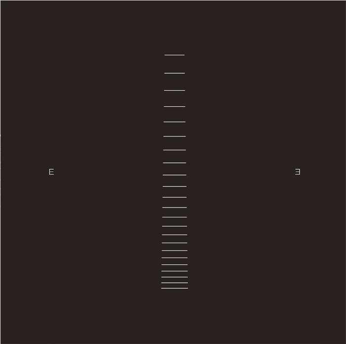 Echo Echo album (vinyl + mp3) - IAMX