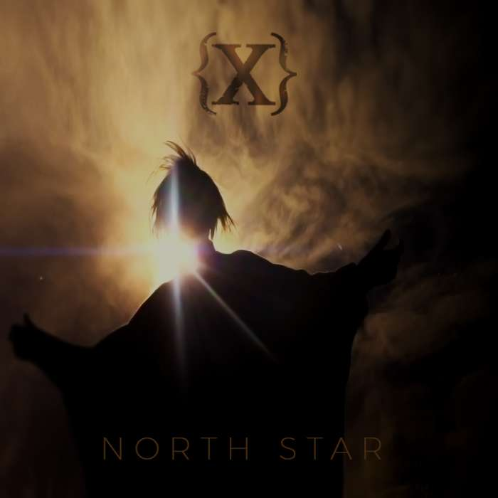 North Star single (WAV) - IAMX