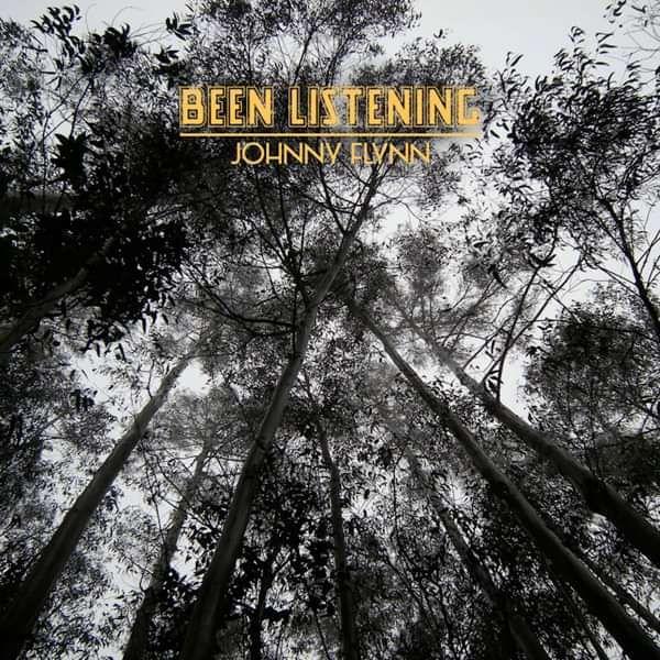 Been Listening - 2xLP repress - Johnny Flynn & The Sussex Wit (UK Merch)