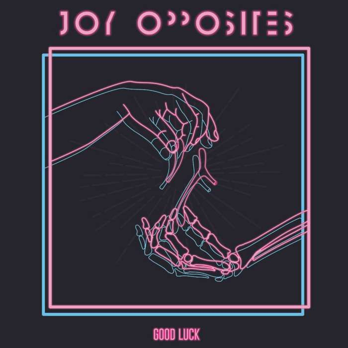 "'Good Luck / Dead Ends' 7"" Vinyl - Joy Opposites"