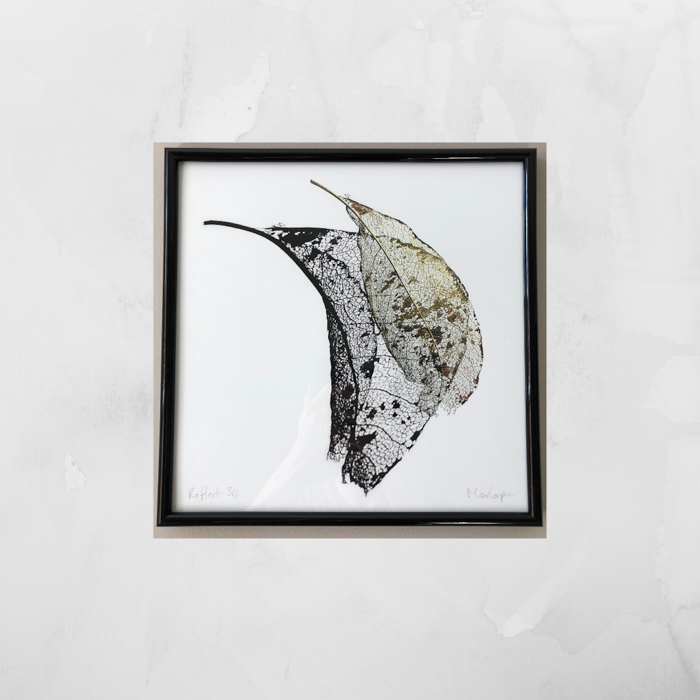 Reflect -  Giclée Art Print (Limited Edition) - Max Cooper Store Front