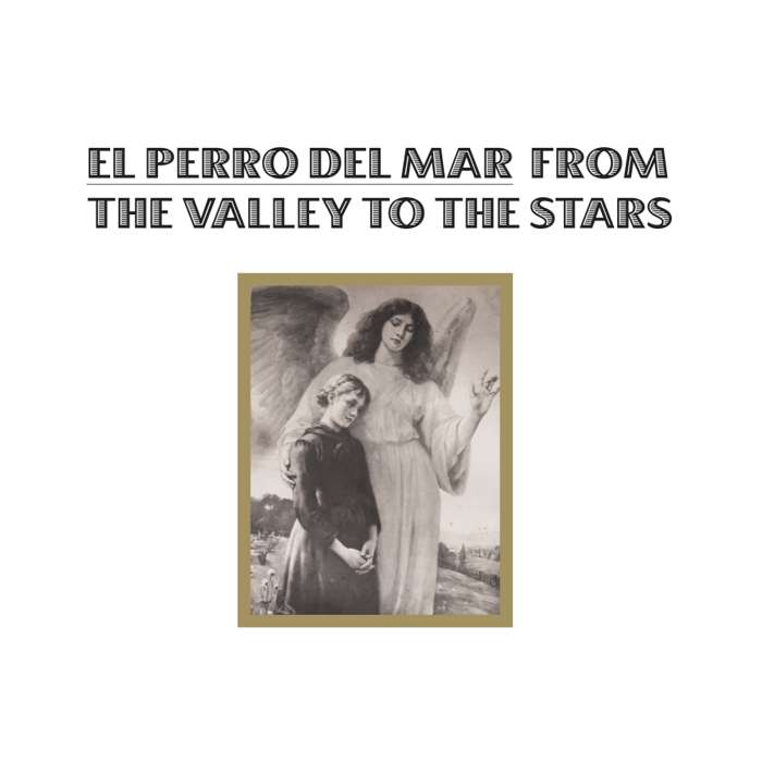 El Perro Del Mar - From the Valley to the Stars - Vinyl - Memphis Industries
