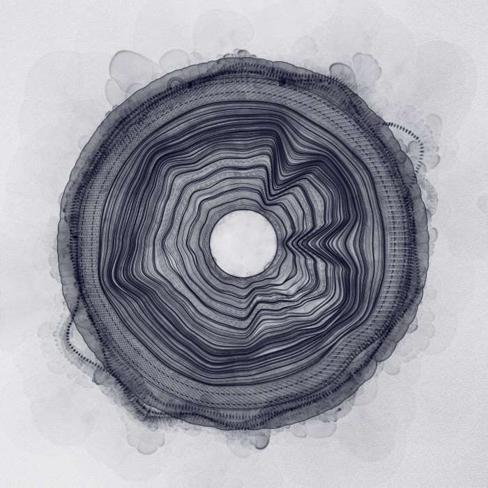 Rob Clouth - Transition EP - Mesh