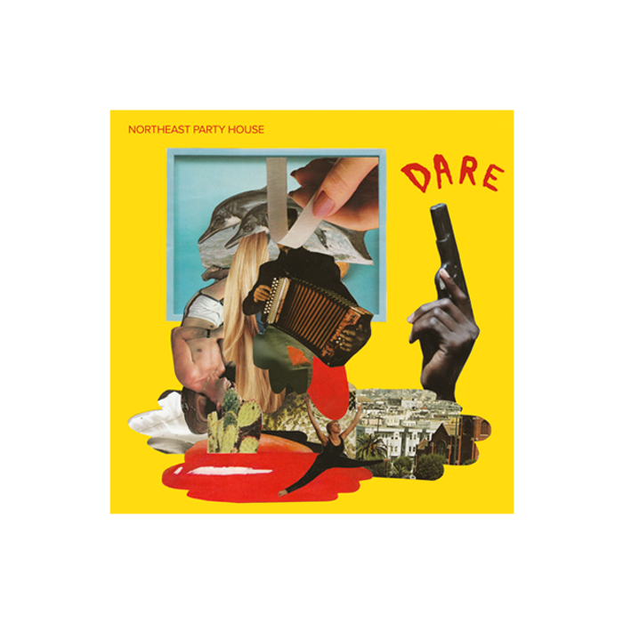 Dare Signed CD - Northeast Party House