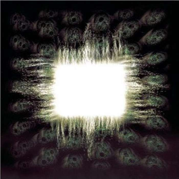 Tool -  'Aenima' CD - Omerch