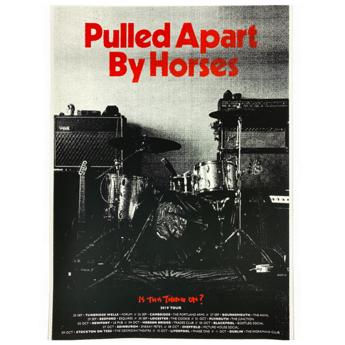 (NEW) Is This Thing On? / Screenprint - Pulled Apart By Horses