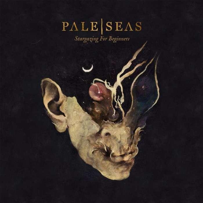 Stargazing for Beginners CD - Pale Seas USD