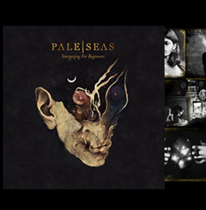 Stargazing for Beginners Vinyl LP - Pale Seas USD