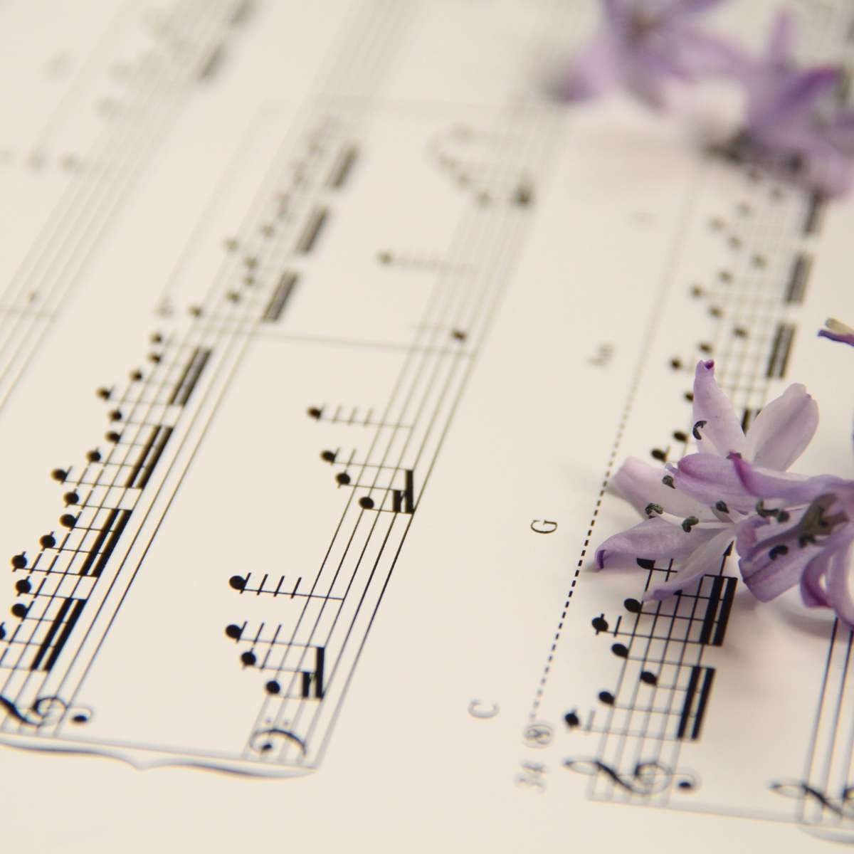 DRAGONFLY KEEPER - PIANO SHEET MUSIC (Downloadable PDF)