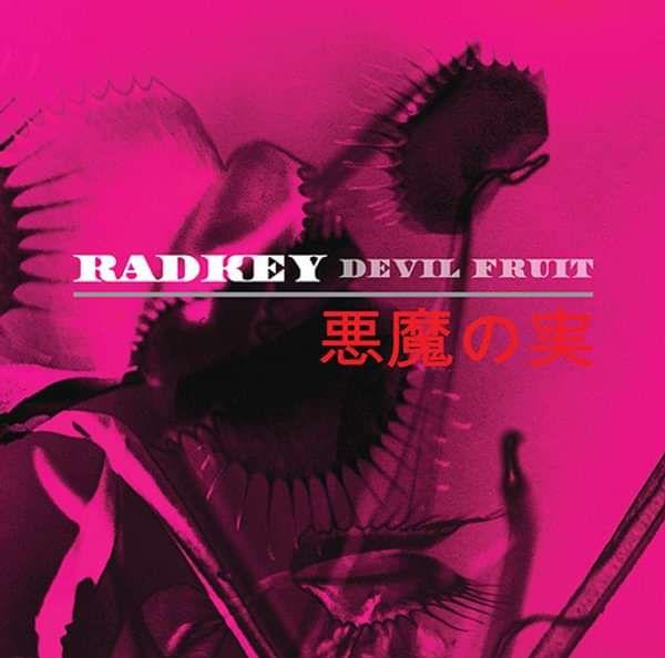 """Devil Fruit 12"""" Vinyl - Radkey"""
