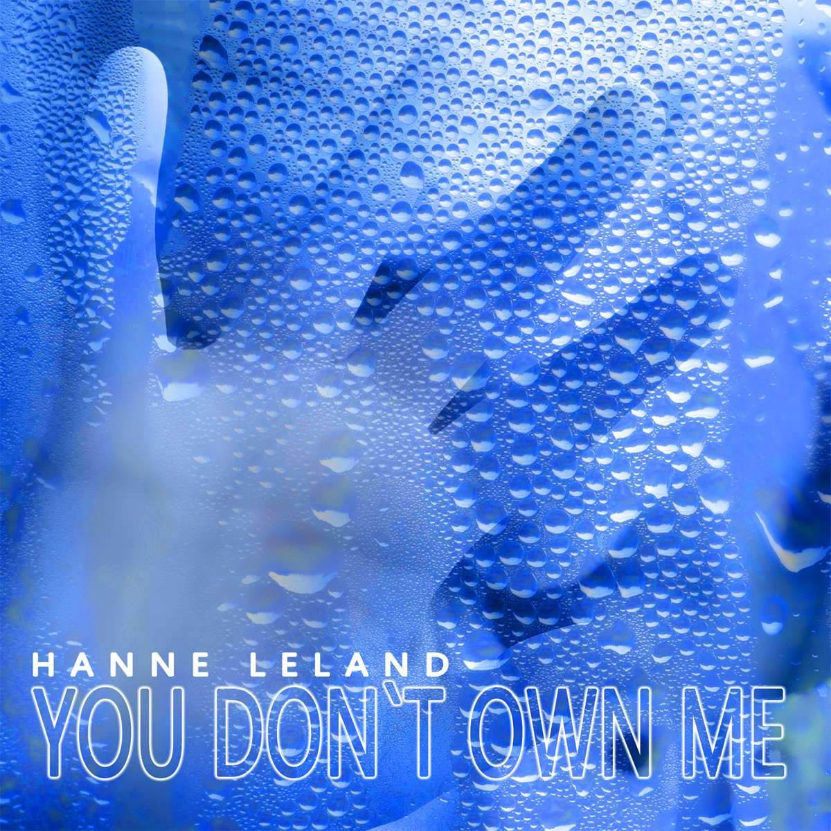 you dont own me download