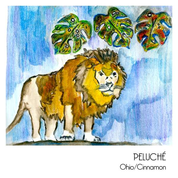 Peluché - Ohio Tape Release **SOLD OUT** - RIP Records