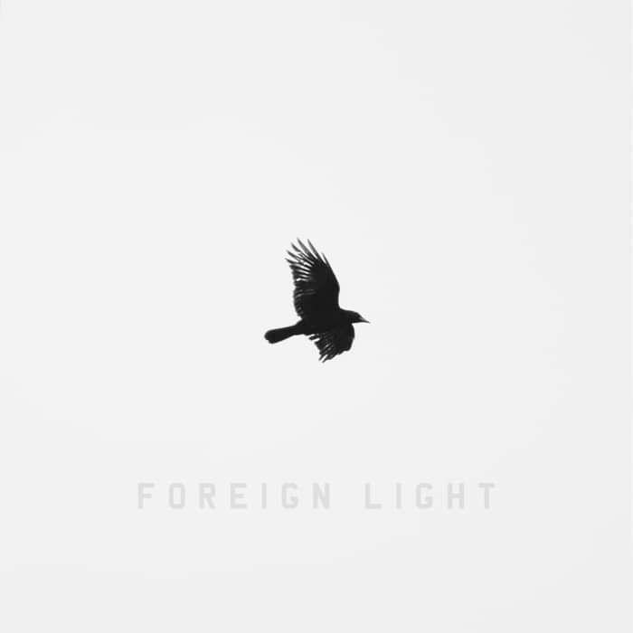 Foreign Light (Digital Download) - Steeze