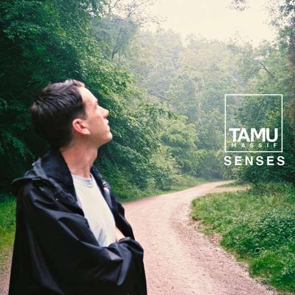 Senses - Free Download - Tamu Massif