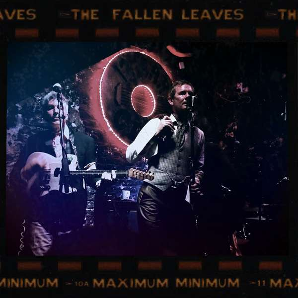 Maximum Minimum 200g Vinyl LP - The Fallen Leaves