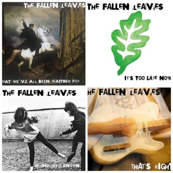 Special Offer Bundle of 4 Fallen Leaves CD Albums - The Fallen Leaves