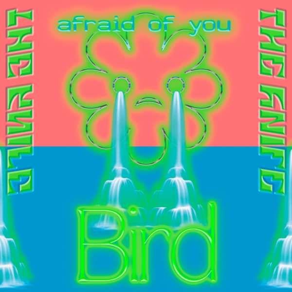 "The Knife - Bird / Afraid Of You 7"" - The Knife"