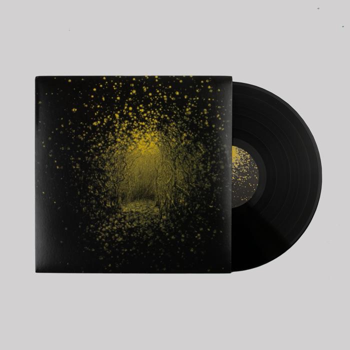Burst Apart Vinyl - The Antlers